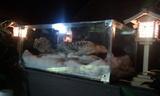 2011-11-16 13.51.00.jpg